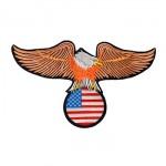 Águia com bandeira EUA