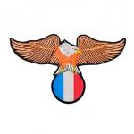 Águia com bandeira França