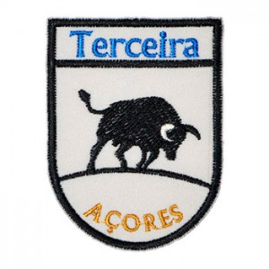 Terceira Açores touro