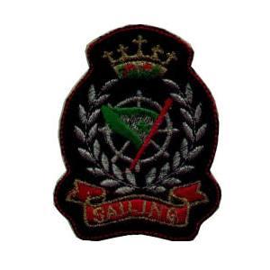 emblema brasão brasão 2.def