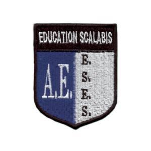 emblema estabelecimento ensino A.E