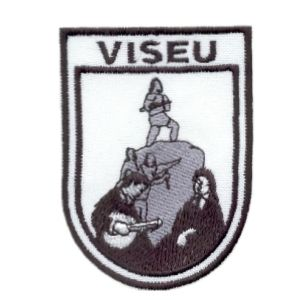 emblema-estudante-viseu-estudantes-def