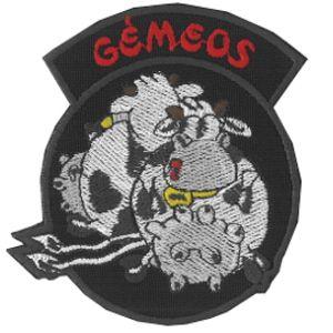emblema-signo-gemeos-com-vaca-def