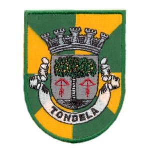 emblema cidade Tondela.def