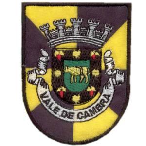 emblema cidade Vale Cambra.def